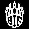 BIG newQ